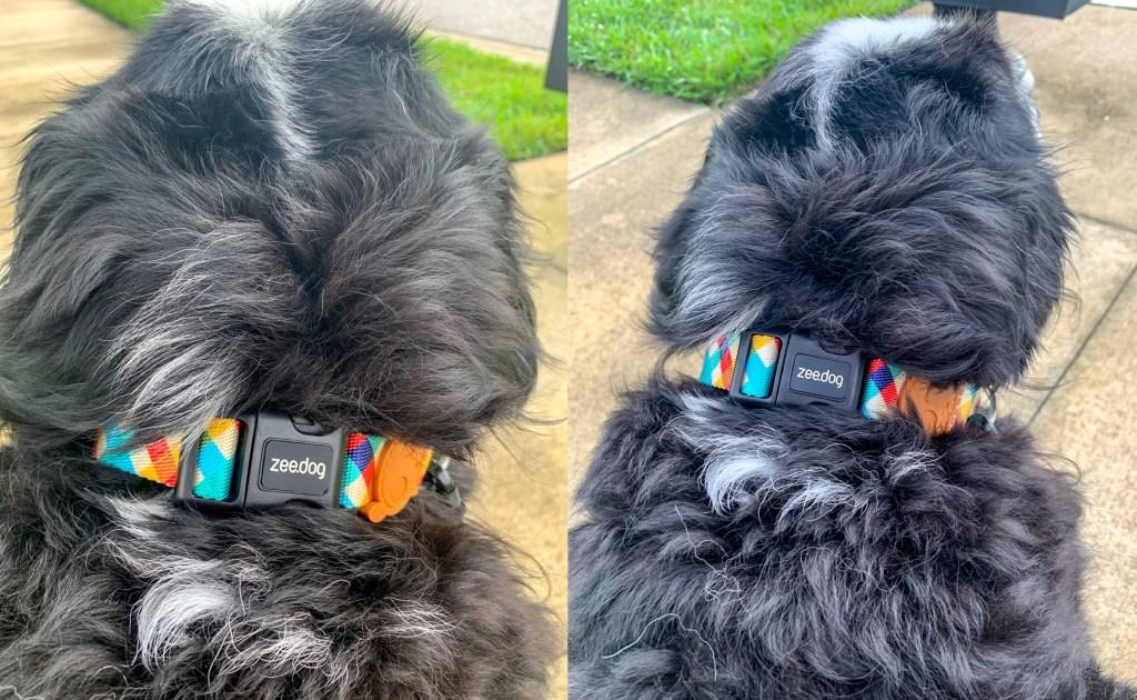 Hands-Free Dog Leashes Zee.Dog adjustable rope dog leash