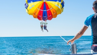 Agonizing Video Shows Moment Man Becomes Victim Of Shark Attack While Parasailing