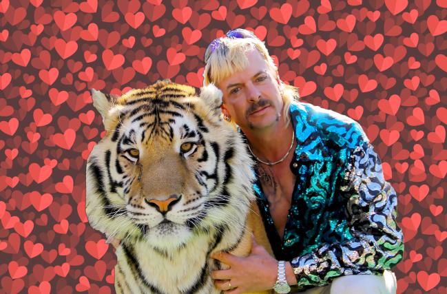 Joe Exotic Bachelor Tiger King