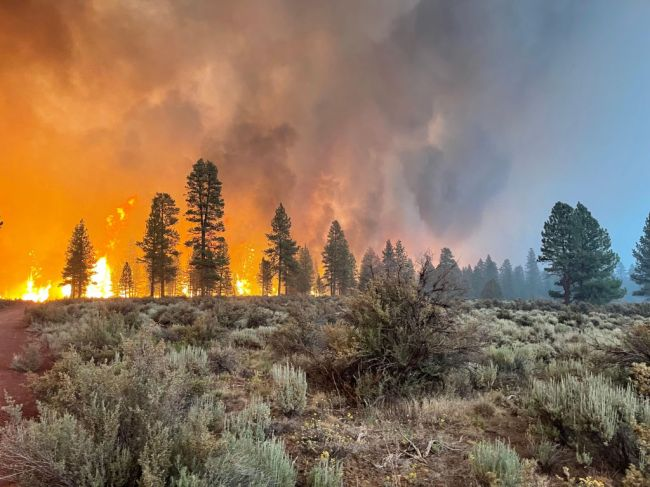 Bootleg Fire Oregon