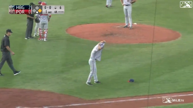 Minor League Manager Tripp Keister Removes His Jersey On The Field Gets Ejected