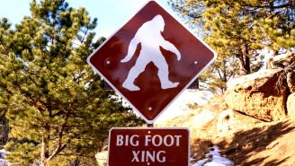 Bigfoot Sighting Caught On Video In Michigan Has Experts Baffled