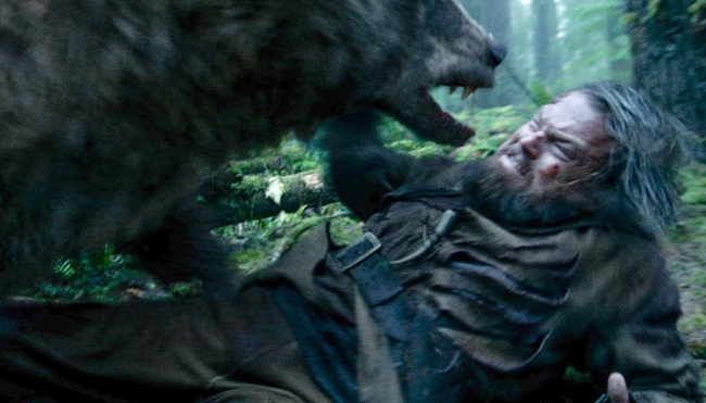 grizzly bear attacked stalked man alaska