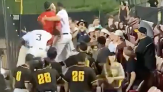 All Hell Broke Loose At A Baseball Game When Players Tried To Fight A Fan Who Chucked A Beer At Them