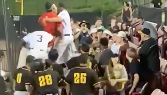 baseball players fight beer throwing fan