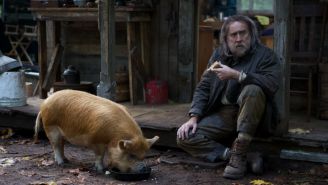 Nic Cage's New Movie About Losing His Beloved Truffle Pig Is Apparently Excellent