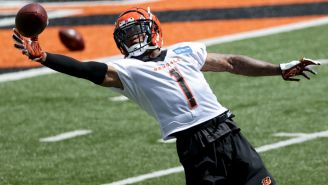 Bengals Rookie WR Ja'Marr Chase Can't Stop Dropping Passes And It's Becoming An Issue