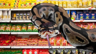 WATCH: 10-Foot Python Emerging From Shelf Frightens No One In Australian Grocery Store