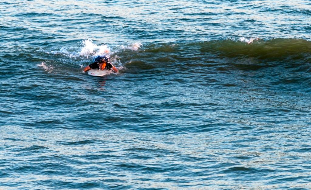 Spinner Shark jumps over surfer in North Myrtle Beach