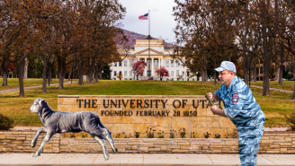 An Incredibly Self-Aware Lamb Is On The Run From A Research Lab At The University Of Utah