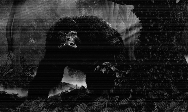 New Bigfoot Sighting Caught On Video In Idaho Unlikely To Be A Hoax
