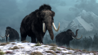 New Company Says It Will Bring The Woolly Mammoth Back From Extinction Within 6 Years
