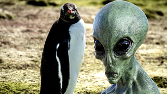 New Discovery Leads Scientists To Believe Penguins Could Actually Be Aliens