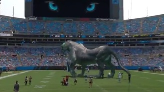 The Carolina Panthers Released A 'Mixed Reality' Panther Video Before Game Against Jets And It Was Incredible