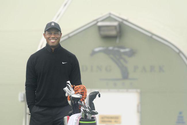 steve stricker tiger woods comeback play golf again