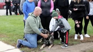 The Homecoming For This Wisconsin Police Dog That Survived Being Shot In The Face Will Give You Chills