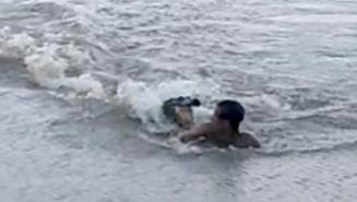 Terrifying Moment Lightning-Fast Alligator Torpedo Attacks Swimmer Who BARELY Escapes