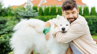 Pawternity Leave, PTO After Getting A Dog, Is Now A Real Debate Because No One Wants To Work Anymore